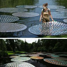 'Waterlilies in Bloom'   Bruce Munro took 65,000 defunct discs and turned them into 100 shining waterlilies for his light installation at Longwood Gardens in Pennsylvania.