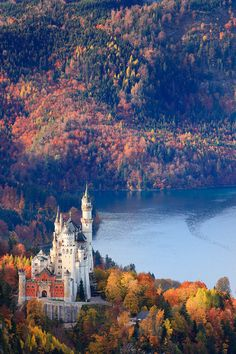A castle in Germany. What I would give to wake up, and having a bird's eye view of the autumn trees.