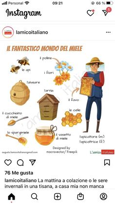 Italian Vocabulary, Italian Language, Languages, Education, Culture, Learning Italian, Idioms, Onderwijs, Learning