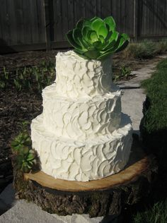 Rustic Wedding Cake. By Wendy DeBord