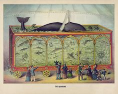 Antique Circus Print - The Aquarium (1873) - Archival Reproduction. $33.00, via Etsy.