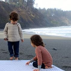 lost coast by ashley hurst for quince & co.