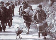 Spain - 1939. - GC -