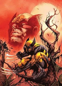 Wolverine Sunset