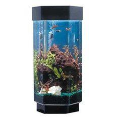 Midwest Tropical Hexagon AquaScape - 15 Gallon Freshwater Acrylic Aquarium (TT-1500) #11-20-Gallons #AquaScape #Freshwater