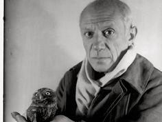 Hi. I'm Picasso. Do you like my owl?