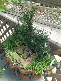 Love small gardens.