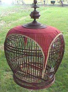 Little Hokum Rag: Old Bird Cages, The bird cage is both a property for the chickens and an ornamental tool. You are able to select what you may want on the list of bird cage types and get a great deal more unique images. Vintage Birds, Vintage Bohemian, Bird In A Cage, Antique Bird Cages, The Caged Bird Sings, Pet Food Storage, Pet Tags, Bird Feathers, Beautiful Birds