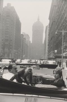Park Avenue, New York, Garry Winogrand