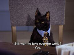 Salem the cat. I use to love this show!!