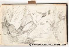Kansallisgalleria - Taidekokoelmat - Luonnoskirja Vintage World Maps, Museum