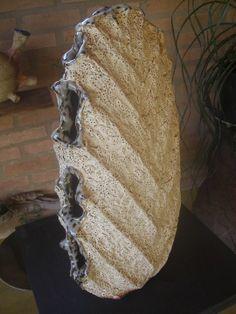 concha,shell, kai, noborigama, wood firing