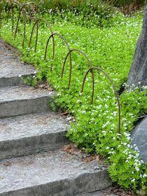 """Det här """"staketet"""" eller trädgårdsprydnaden hittade jag i Stadsträdgården och tyckte att det rostiga järnet mot den vita marktäckaren var ..."""