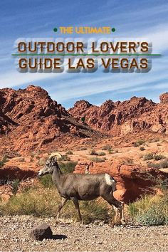 Get your adrenaline pumping with the top outdoor activities near Las Vegas and Southern Nevada, including biking, hiking, kayaking and even snowboarding!