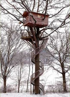 great tree house