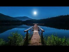Meditation Music / Relaxing Music With Loon Calls Deep Sleep Music, Stress Relief Music, Reflection Questions, Nature Sounds, Music Heals, Meditation Music, Meditation Space, Mindfulness Meditation, Relaxing Music