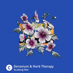 """Geranium & Herb Therapy"" by SuJeong Heo - augmented reality artwork on MetroCards with Metro AR-T. metroAR-T.com"