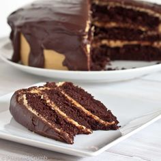 The Ultimate Chocolate Peanut Butter Cake! the-ultimate-chocolate-peanut-butter-cake Just Desserts, Delicious Desserts, Yummy Treats, Sweet Treats, Cupcakes, Cupcake Cakes, Sweet Recipes, Cake Recipes, Dessert Recipes
