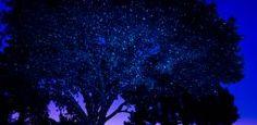 Декоративные Лазерное освещение и огни | Искра Магия