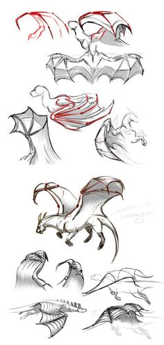 Wing Help Source by Fantasy Drawings, Pencil Art Drawings, Animal Drawings, Drawing Techniques, Drawing Tips, Drawing Sketches, Dragon Artwork, Dragon Drawings, Dragon Poses
