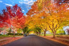 Fall in small town Pennsylvania Photo by Viet Dao -- National Geographic Your Shot
