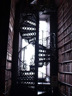 Trinity College Library Ladder