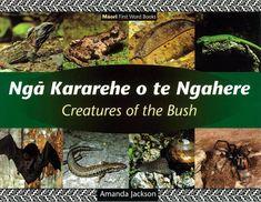 """I like this book because it teaches you the maori words of the Creatures of the bush. Kararehe o te Ngahere"""".New Zealand:Kowhaiwhai Maori Words, Story Time, Jackson, This Book, Creatures, Teaching, Books, Culture, Libros"""
