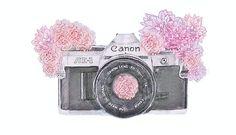 flowers illustration tumblr - Pesquisa Google