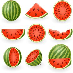 Watermelon slices clip art This is a FREE vector graphic that you can download at WWW 4VECTOR COM #ve Watermelon vector Watermelon images Watermelon painting