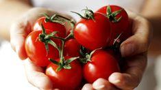 Když se podíváte, co se dnes pěstuje na zahrádkách, zjistíte, že sortiment rostlin se velice změnil. Vegetables, Gardening, Lawn And Garden, Vegetable Recipes, Veggies, Horticulture