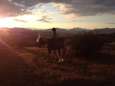 """Kermit and """"T"""", riding into the #sunset! Photo sent in by Amy Friend. #horses #horseriding #horseback #equestrians #equestrian #cowboy"""