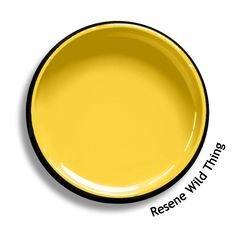 Resene Essential Cream is a cream leaning strongly towards mustard. View on Resene Multi-finish palette View this and of other colours in Resene's online colour Swatch library