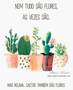 Como cultivar suculentas, decorar a casa com suculentas, lembrancinhas de suculentas Motivational Phrases, Magic Words, More Than Words, Wallpaper Quotes, Place Card Holders, Positivity, Messages, Lettering, Thoughts