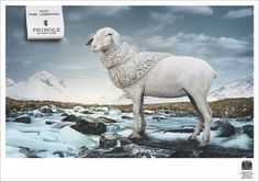 Great ad campaign! Funny Advertising, Creative Advertising, Advertising Poster, Advertising Campaign, Poster Ads, Advertising Design, Sheep Art, Pringle Of Scotland, Great Ads