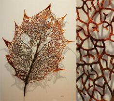 Leaf skeleton (Holly) - Click to view product details