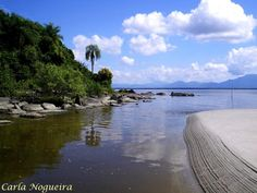 Núcleo Perequê - Ilha do Cardoso - 6161631