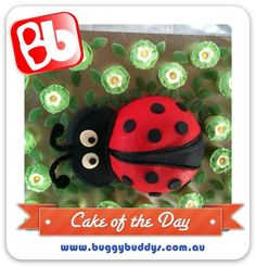 Lady Bird Birthday Cake  For kids party ideas in Perth, WA see the Buggybuddys website. http://www.buggybuddys.com.au/kids_party_perth.html