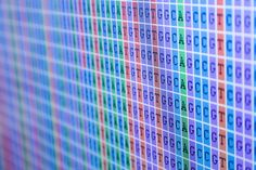 Whole-genome sequencing can be used to identify patients' risk for hereditary cancer, researchers have demonstrated. This is the first study that has used whole-genome sequencing to evaluate a series of 258 cancer patients' genomes to improve the ability to diagnose cancer-predisposing mutations, researchers say.  This is the first study that has used whole-genome sequencing to evaluate a series of 258 cancer patients' genomes to improve the ability to diagnose ...  http://bit.ly/1EBzCTS