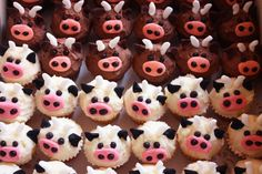 cow cupcakes by *ilovemuffins*, via Flickr