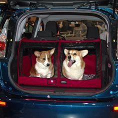 Double Car-Go Pet Shelter