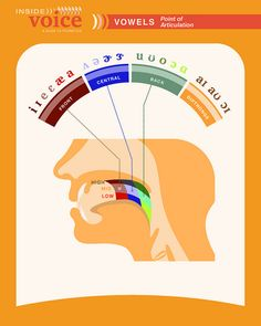 Vowels-Point of Articulation-Another great poster by Bruce Myhre, via Flickr  and also http://portfotolio.net/34125897@N08 Pinned by SOS Inc. Resources @sostherapy.