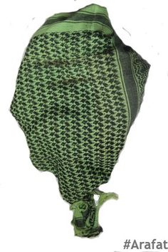 Green Lizzard Scarves, Winter Hats, Beanie, Green, Scarfs, Tie Head Scarves, Beanies