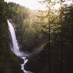 """I couldn't sleep, so at 5am I decided to go on a mini roadtrip around my state. I reached Wallace Falls just as the morning light started to break through...."" -@fursty, Washingston, USA"