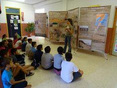 Alrededor de 7.800 personas han participado en las actividades desarrolladas por la Asociación de Naturalistas del Sureste (Anse) sobre conservación de arenales y lagunas costeras. En conc ...