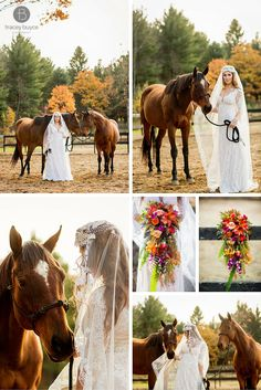 equestrian themed wedding | bride with horse at Fall wedding | Tracey Buyce Photography #equestrianwedding