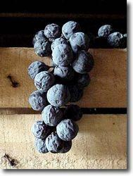 Amarone- one of my favorite wine varieties.