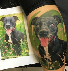 Amazing dog portrait done by 👉🏻 https://m.facebook.com/painfulartManu/  #dog #portrait #color #tattoos #tattooartist #painfulart #art #green #pitbull #inked #inkedmag #tattooartist