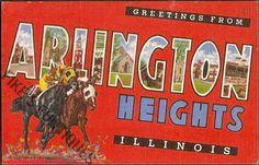 Arlington Heights, Illinois Vintage Postcard - Greetings from Arlington Heights Large Letter