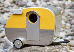 camping out  (Take care - birds or fledglings may cook in metal bird houses when the weather's hot!)
