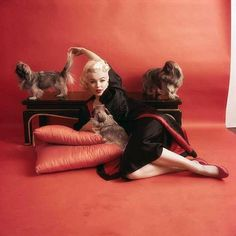 Marilyn. Oriental sitting. Photo by Milton Greene, 1955.